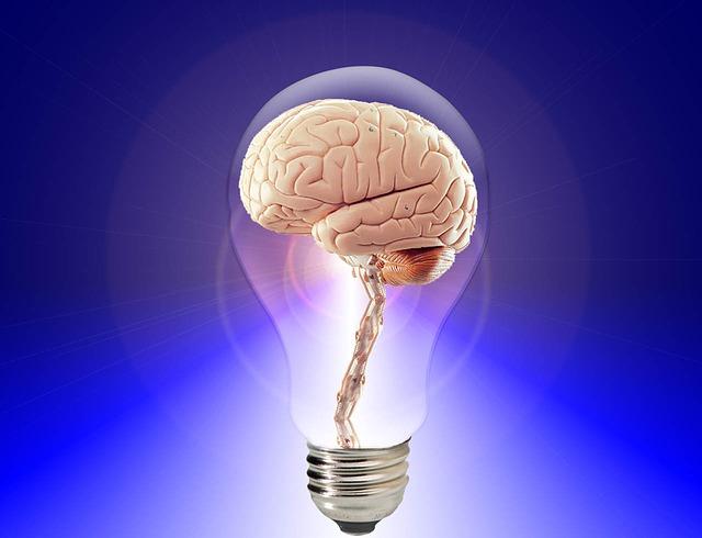 image brain20424_640.jpg (48.1kB)